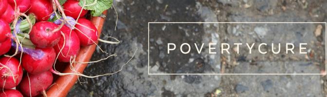 PovertyCure: la asombrosa serie sobre la pobreza