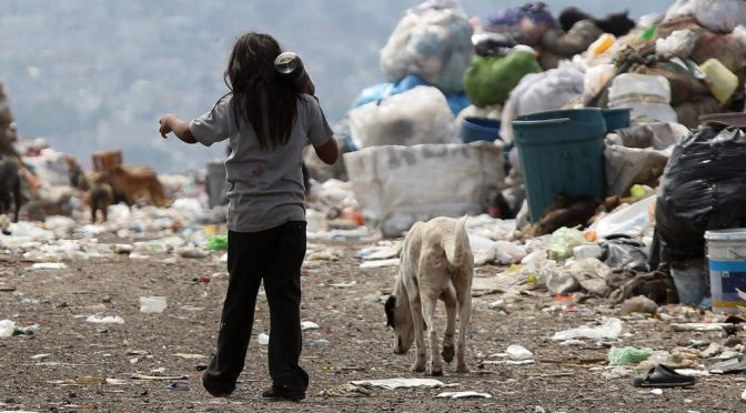 ¿Te preocupa la pobreza? Ocúpate de los empresarios