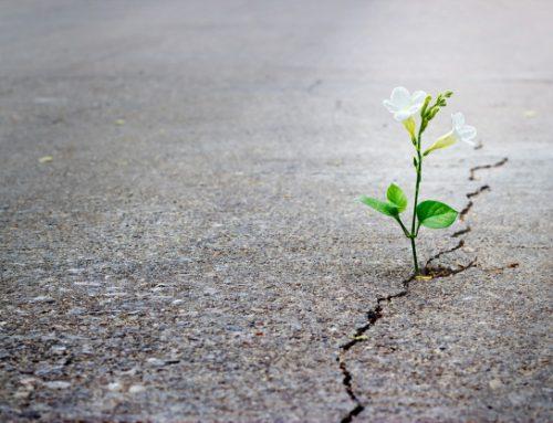 Analizar la realidad con esperanza – P. Marcelo Barrionuevo